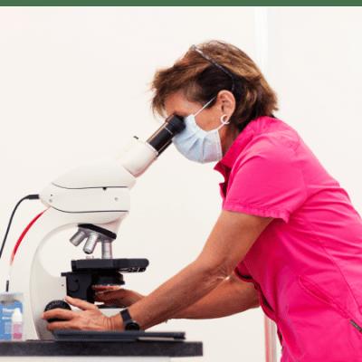 Dr Nussbaumer Microscopie